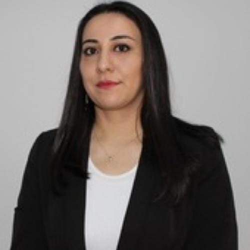 Nərmin Əliyeva Eldəniz qızı